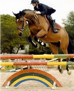 calul-de-sa-francez